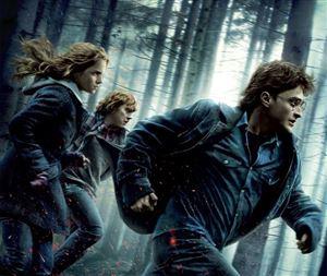 Harry Potter chính thức tái ngộ khán giả Việt trên màn ảnh rộng sau 10 năm