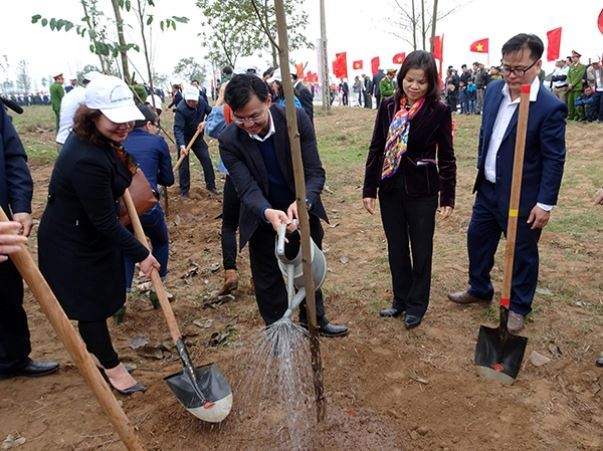 Dịp đầu Xuân Mậu Tuất: Hà Nội sẽ trồng khoảng 150.000 cây xanh các loại