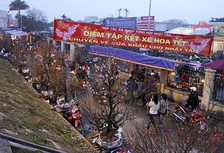 Các phiên chợ Tết ở Hà Nội thu hút du khách